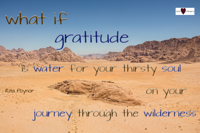 Wilderness Gratitude